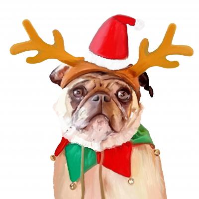 Gesloten met de feestdagen!